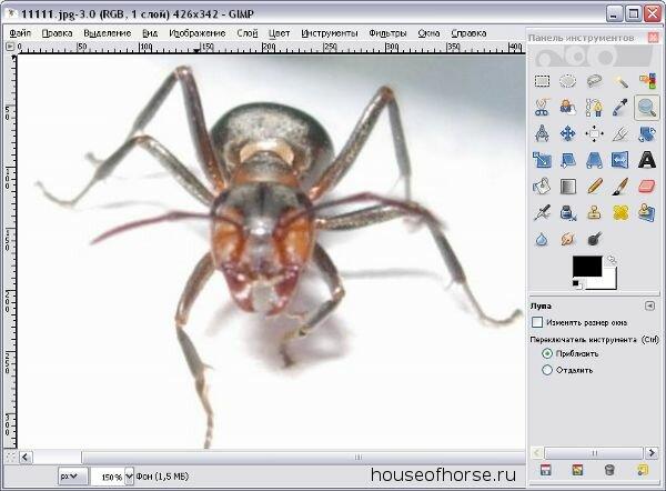 редактор фото профессиональный онлайн